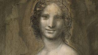 """Le visage de """"La Joconde nue"""", dessin préparatoire au charbon de bois conservé au château de Chantilly.  (Josse / Leemage / AFP)"""