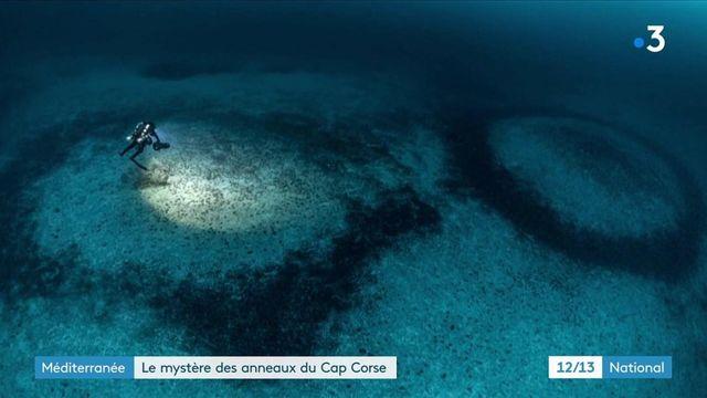Cap Corse : une équipe de plongeurs analyse des mystérieux anneaux