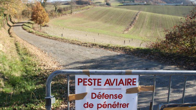 Une restriction de circulation dans le Gers, après la découverte d'un foyer de grippe aviaire, en décembre 2016. (SEBASTIEN LAPEYRERE / MAXPPP)