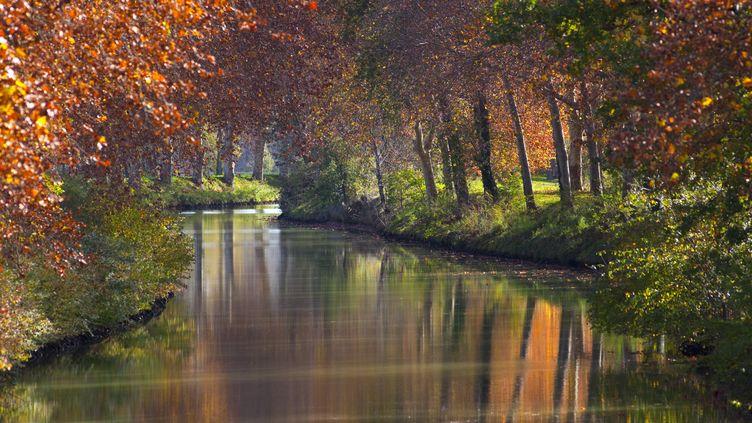 Le canal du Midi représente 360 km de voies navigables entre la Méditerranée et l'Atlantique. Il comporte 328 écluses, aqueducs et autres ponts, réalisés entre 1667 et 1694. (TRISTAN DESCHAMPS / PHOTONONSTOP / AFP)