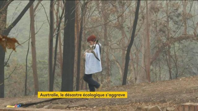 Australies : les incendies continuent de dévaster le pays