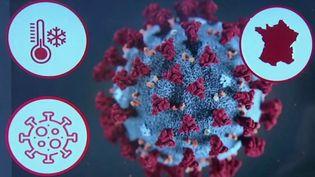 Coronavirus: comment expliquer le ralentissement de la baisse des cas ? (FRANCE 2)