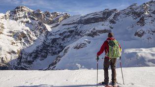 Un skieur dans le Parc national des Pyrénées, le 25 février 2017. (BARRERE JEAN-MARC / HEMIS.FR / HEMIS.FR / AFP)