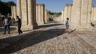 A Jéricho, une plus grande mosaïques du Proche-Orient a été dévoilée avant des travaux (20 octobre 2016)  (Issam Rimawi / Anadolu Agency / AFP)