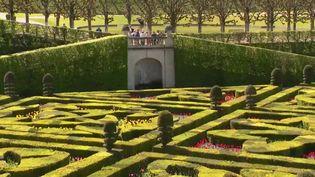 L'un des plus beaux jardins de France se trouve au château de Villandry (Indre-et-Loire). Rencontre avec le châtelain et les jardiniers. (FRANCE 3)
