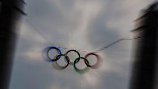Les anneaux olympiques flottaient au dessus du stade de Berlin, le16 mars 2015, Hambourg, candidate pour 2024 (PEUL ZINKEN / DPA / AFP)