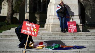Des anti-Brexit manifestent devant le Parlement de Westminster, à Londres, lundi 4 mars 2019. (HANNAH MCKAY / REUTERS)