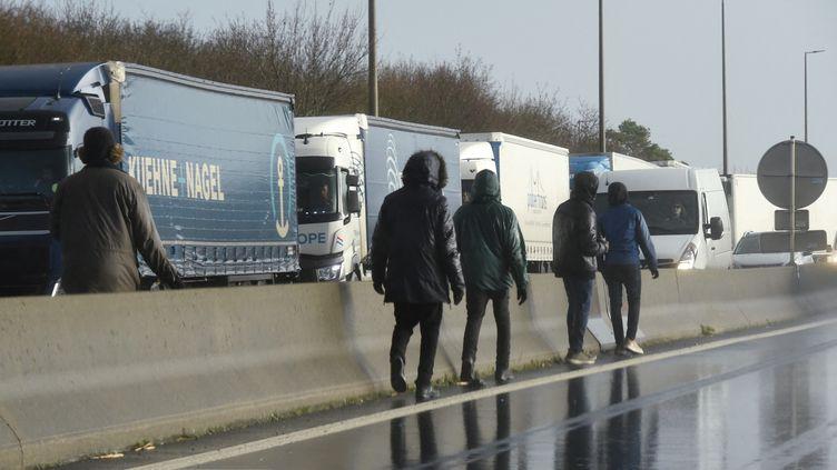 Des migrants clandestins à Calais (Pas-de-Calais) tentent de se rendre en Grande-Bretagne. Photo d'illustration. (FRANCOIS LO PRESTI / AFP)
