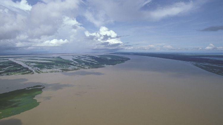 Vue aérienne d'une partie de l'Amazone. (ARIS MIHICH / AGF / AFP)