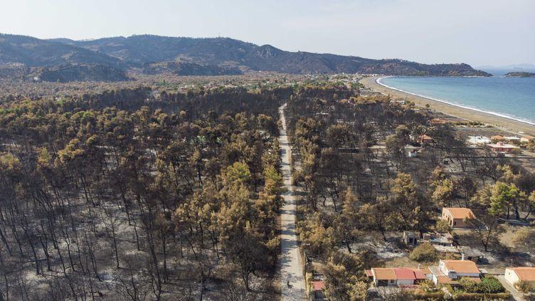 La végétation brûlée par un incendie à Evia, en Grèce, le 13 août 2021. (NICOLAS ECONOMOU / NURPHOTO / AFP)