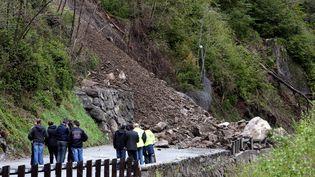 Eboulement sur la route de la Tinée (Alpes-Maritimes) le 28 avril 2013. (ERIC DULIERE / MAXPPP)