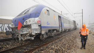 Un TER immobilisé sur les voies (AFP/PATRICK VALASSERIS)