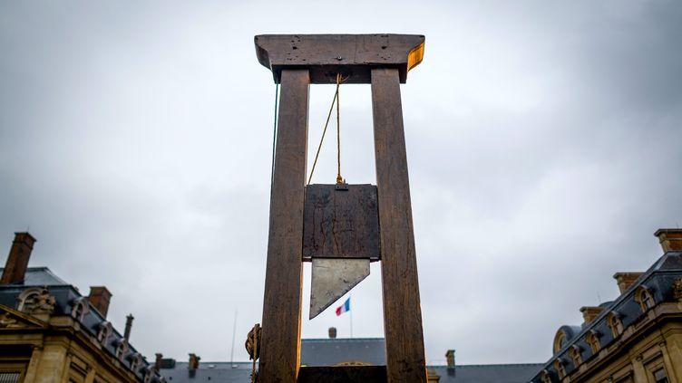 Une guillotine installée place du Palais Royal, à Paris, lors d'une manifestation, le 20 décembre 2012. (  MAXPPP)