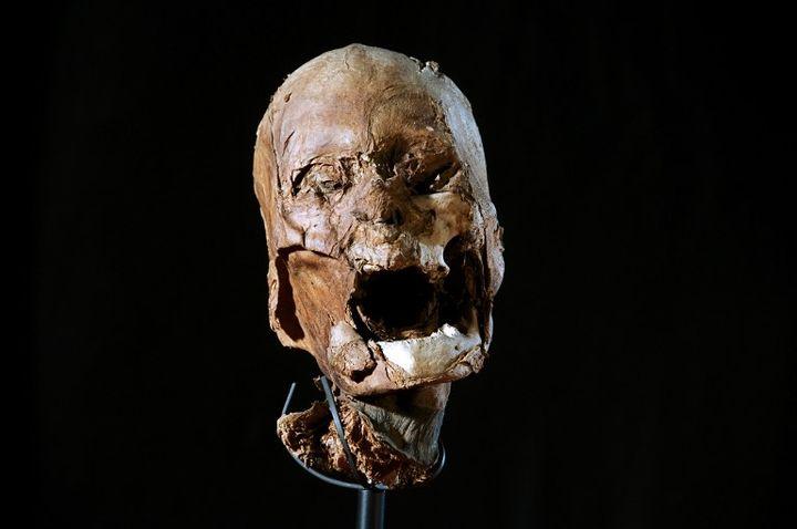 Présentation, le 12 février 2012 à Paris, de la tête momifiée attribuée depuis 2010 à Henri IV. (BELLET-GABET / AFP)