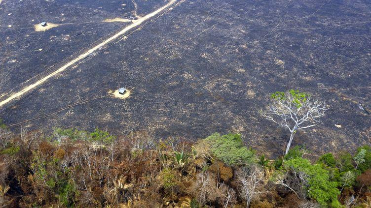 Vue aérienne d'une partie de la forêt amazonienne partie en fumée près de Porto Velho dans l'État de Rondonia au Brésil. (CARLOS FABAL / AFP)