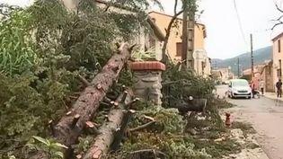 Pyrénées-Orientales : une tornade frappe le village de Maureillas (FRANCE 2)