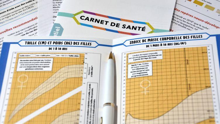 Le nouveau modèle de carnet de santé entre en vigueur le 1er avril 2018 en France. (GERARD BOTTINO / CROWDSPARK)