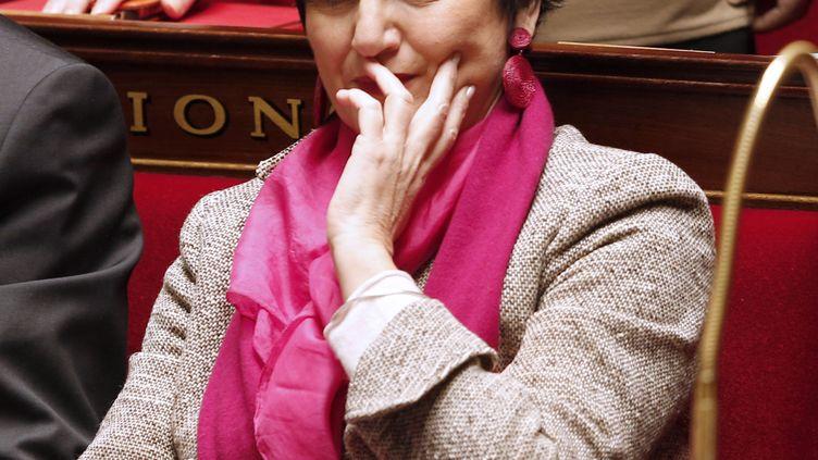 La ministre de la Famille, Dominique Bertinotti, à l'Assemblée nationale, à Paris, le 5 février 2013. (FRANCOIS GUILLOT / AFP)