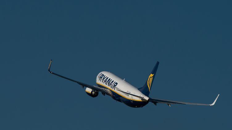 Un Boeing 737 de la compagnie aérienne Ryanair, le 11 octobre 2014. (PHILIPPE HUGUEN / AFP)