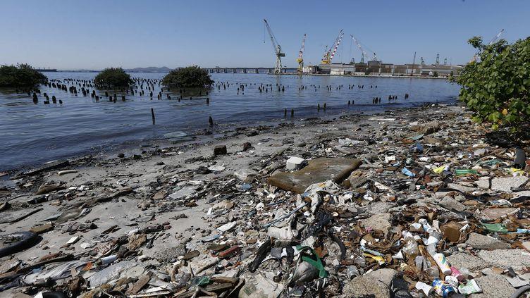 Des ordures échouées sur le littoral de la baie de Guanabara à Rio de Janeiro, le 1er août 2016. (MAXPPP)