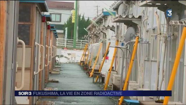 Japon : la vie à Fukushima cinq ans après la catastrophe