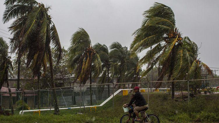 Un homme fait du vélo à Bilwi, Puerto Cabezas, au Nicaragua, le 16 novembre 2020 alors que l'ouragan Iota traverse les Caraïbes en direction de la frontière entre le Nicaragua et le Honduras. (STR / AFP)