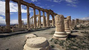 La cité antique de Palmyre (Syrie), le 14 mars 2014. (JOSEPH EID / AFP)