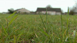 Environnement : une mairie offre une prime à un agriculteur pour qu'il n'utilise plus de pesticides (France 2)