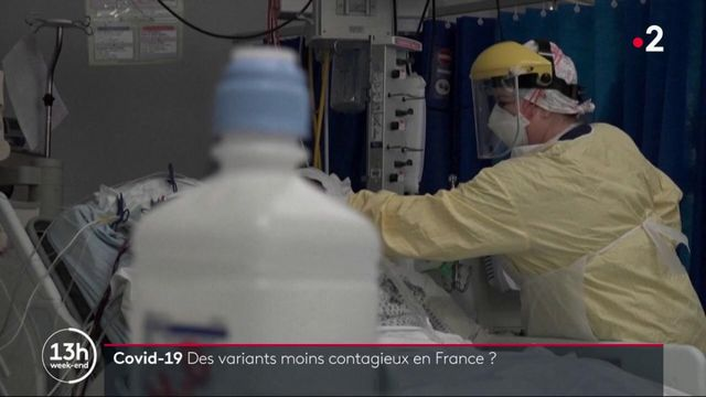 Covid-19 : des variants moins contagieux en France ?