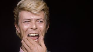 Le chanteur David Bowie est photographié au début des années 1990. (MARCELLO MENCARINI / LEEMAGE / AFP)