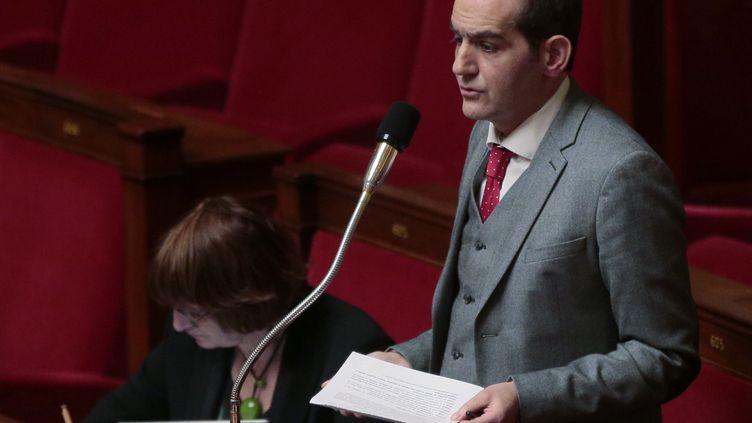 Pouria Amirshahi a été député socialiste de la 9e circonscription des français de l'étranger entre 2012 et 2017. (JACQUES DEMARTHON / AFP)