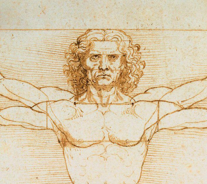 """Léonard de Vinci : """"L'Homme de Vitruve"""" (détail)  (Leemage)"""