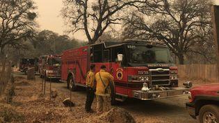 Un ciel de fournaise dans le nord de la Californie où des pompiers de l'Oregon interviennent en renfort, le 12 novembre 2018. (GREGORY PHILIPPS / RADIO FRANCE)