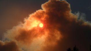 """Le soleil est obscurici par la fumée de l'incendie """"Creek"""", à Sylmar au nord de Los Angeles, au matin du 5 décembre 2017, deuxième jour de la vague d'icendie qui touche la région. (GENE BLEVINS / REUTERS)"""