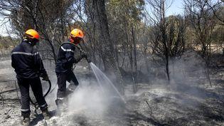 Deuxième jour de l'incendie qui a parcouru plus de 700 héctares de forêt à Saint Cannat. (MAXPPP)