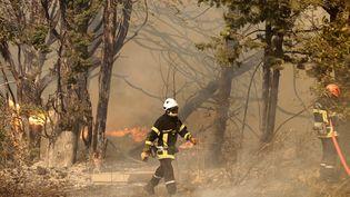 Des pompiers luttent contre un incendie à Saint-Cannat (Bouches-du-Rhône), le 15 juillet 2017. (MAXPPP)