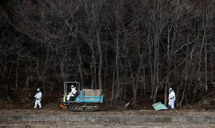 Opération de décontaminationaux abords d'une forêt de Tomioka,dans la préfecture de Fukushima, le 24 février 2015. (TORU HANAI / REUTERS)