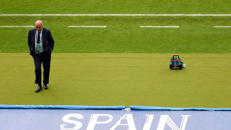 Le sélectionneur de l'Espagne Vicente Del Bosque va-t-il quitter son poste ? (CHRISTIAN CHARISIUS / DPA)