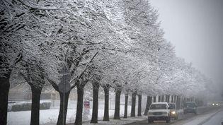 Chutes de neige àMontbrison (Loire), le 5 février 2018. (MAXPPP)