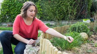 Aurélie, blogueuse culinaire végétalienne, cueille des herbes dans le jardin de son domicile, à Taverny(Val-d'Oise), le 19 mars 2014. (MATHIEU DEHLINGER / FRANCETV INFO)