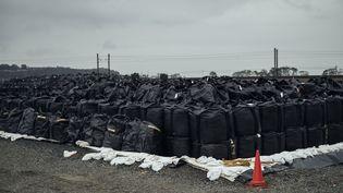 Les sacs pleins de déchets radioactifs s'entassent à Tomioka, près de la centrale accidentée de Fukushima, le 5 mars 2014. (NICOLAS DATICHE / SIPA)