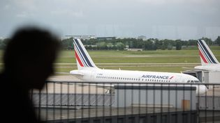 Un avion d'Air France à l'aéroport d'Orly, le 14 juin 2016. (IRINA KALASHNIKOVA / SPUTNIK /AFP)