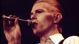 """David Bowie sur scène à Copenhague (Danemark) durant le Station to Station Tour le 29 avril 1976, l'année de la sortie du film """"L'homme qui venait d'ailleurs"""" de Nicolas Roeg. (JORGEN ANGEL / REDFERNS / GETTY IMAGES)"""