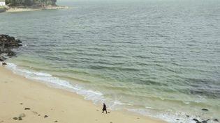 Bretagne : sur la trace de la cité d'Ys à Douarnenez (FRANCE 3)