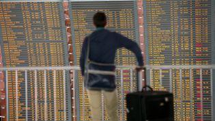 Un passager regarde le tableau de départ des avions dans l'aéroport de Roissy Charles-de-Gaulle (Val d'Oise). (FRED DUFOUR / AFP)
