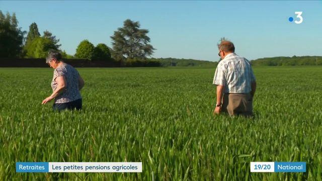 Retraites : les pensions agricoles