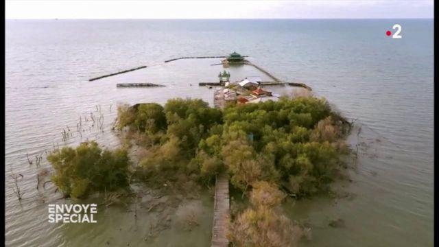 Envoyé spécial. Indonésie : rongés par la montée des eaux, certains villages de Java ne tiennent plus qu'à un fil