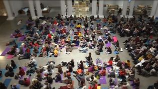 Méditation au musée des beaux-arts de Lille (Capture d'écran France 3)