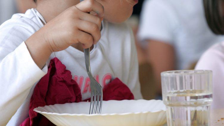 Une enfant déjeunant à la cantine de son école maternelle, en Charente (illustration). (ROMAIN PERROCHEAU / AFP)