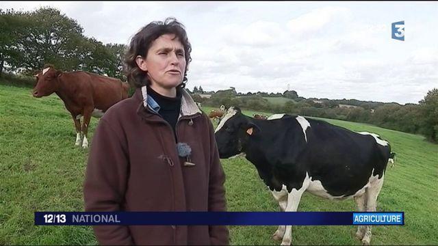 Agriculture : ces producteurs et éleveurs qui n'utilisent plus le glyphosate